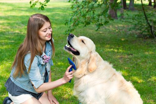 Mujer peina a su perro
