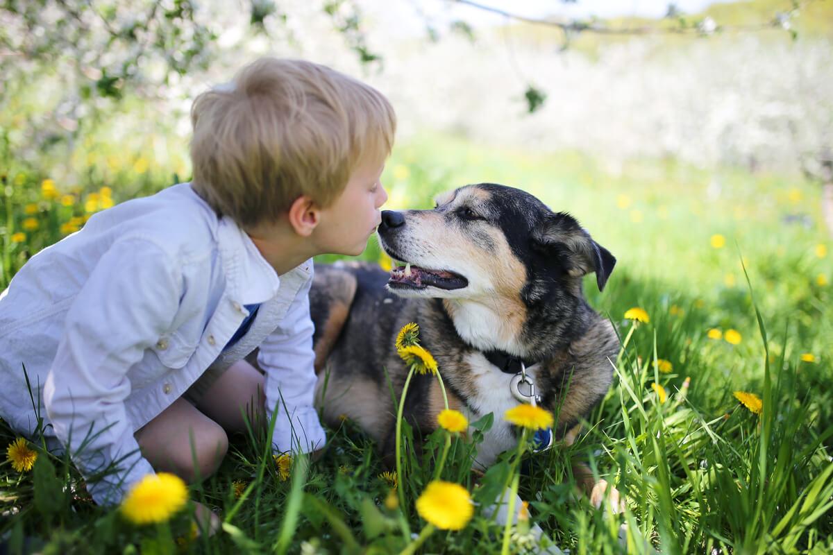 Un perro y un niño felices.