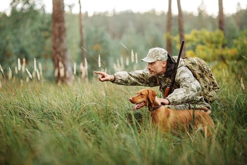 La responsabilidad en los cotos de caza es de los propietarios
