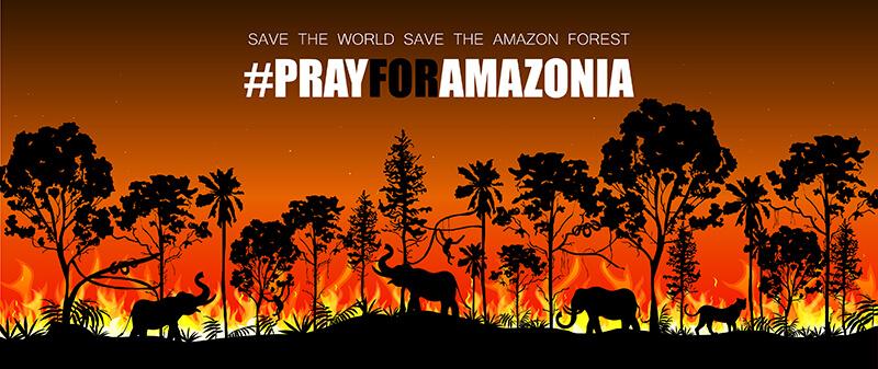 Campaña para salvar el Amazonas