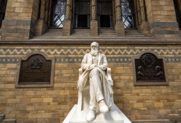 Charles Darwin y el mundo: una relación trascendental