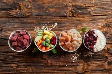 ¿Puede la nutrición beneficiar a tu mascota?