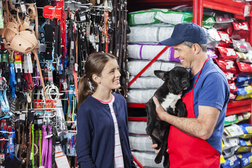 Compra de mascotas