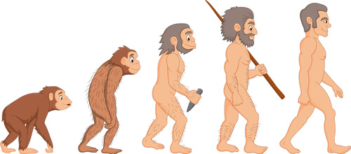 Mono humano desnudo
