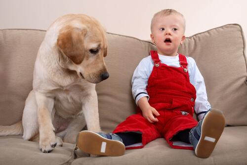 Niño con síndrome de Down al lado de su perro
