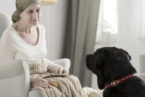 Perro con una señora mayor; el labrador es una de las razas de perros para personas que sufren de ansiedad