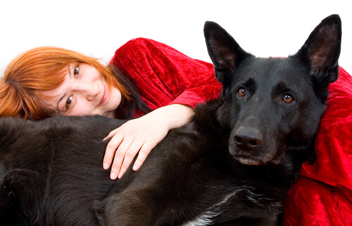 ¿Cuáles son las mejores razas de perros para personas que sufren de ansiedad?