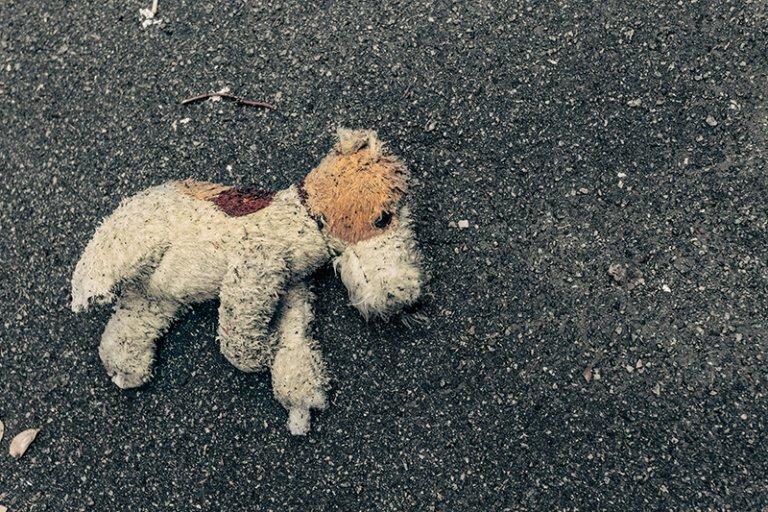 ¿Cuáles son las sanciones por abandono de animales?