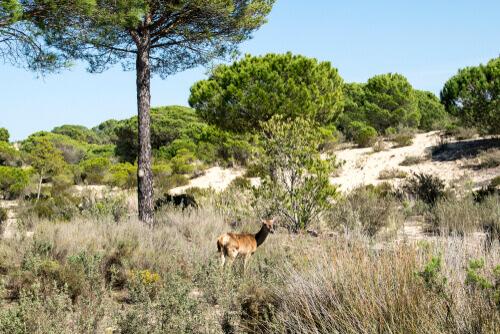 La Red Natura 2000