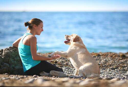 Comunicación telepática con un perro