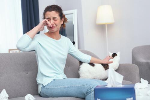 12 consejos para una persona alérgica a los gatos