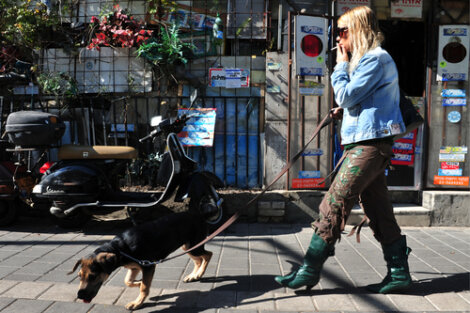 Consecuencias del humo de cigarrillo en los perros - Mis Animales