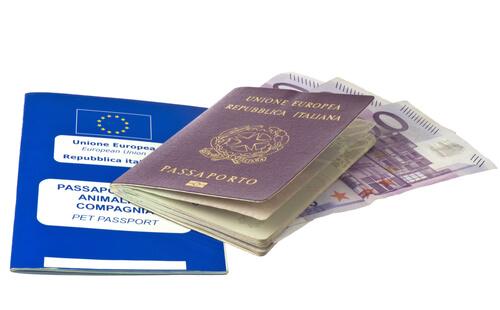 Pasaporte para la identificación de mascotas