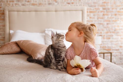 Pautas para que gatos y niños se lleven bien.