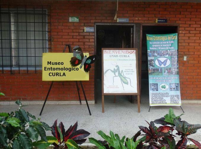 Entrada del Museo entomológico CURLA.
