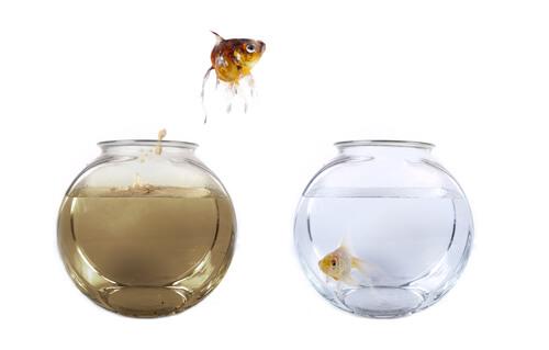 ¿Cómo regular el ciclo del agua en el acuario?