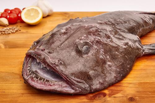 El pez rape común es un monstruo comestible.
