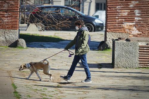 ¿Multas por pasear a los perros en parques en la cuarentena del coronavirus?