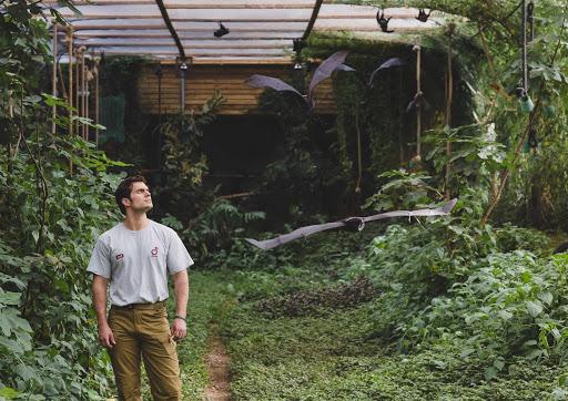 Henry Cavill: embajador de la conservación