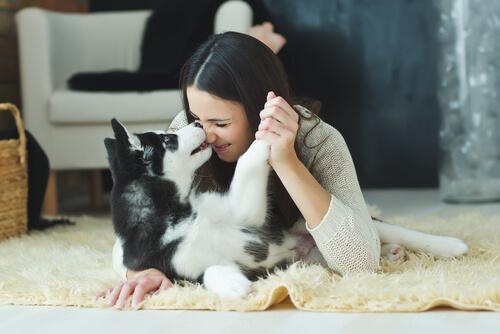 Mujer jugando con su husky siberiano.