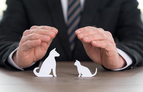 Asegurador protegiendo mascotas de papel con sus manos.