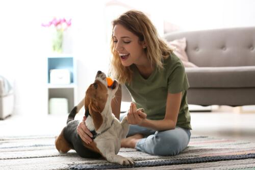 Mujer jugando con su perro en la alfombra.