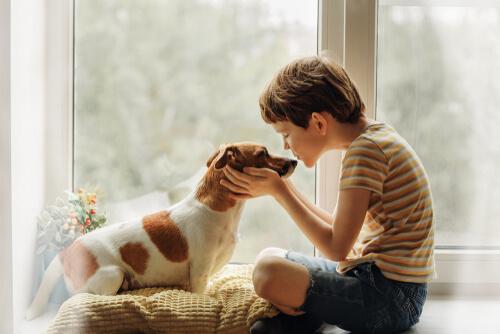 Los besos caninos no son causantes del coronavirus.