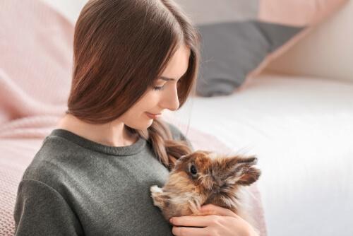 Consejos para cuidar a los conejos durante la cuarentena