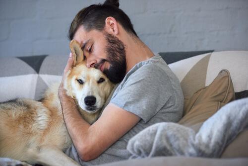 Las mascotas ayudan a calmar a las personas