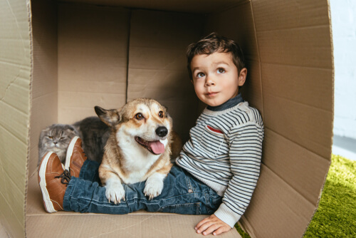 Las mascotas ayudan en el desarrollo de los niños