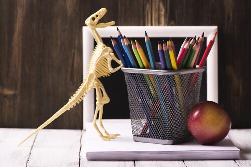 Dibujar animales extintos para no olvidarlos