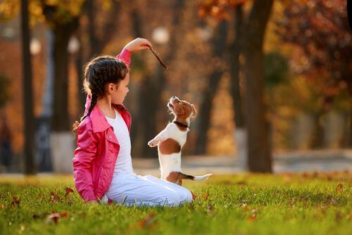 Niña pequeña jugando con un perro en el parque.