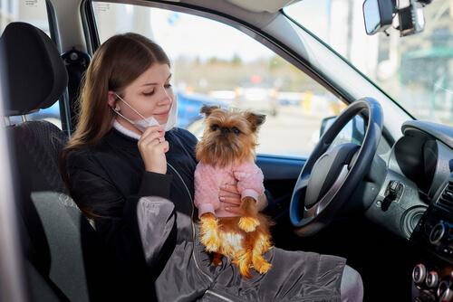 Estado de alarma por coronavirus: fraude en adopciones de perros