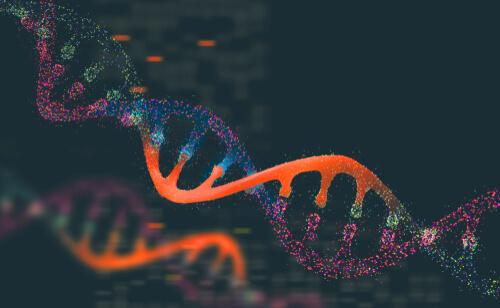Genética y poblaciones animales