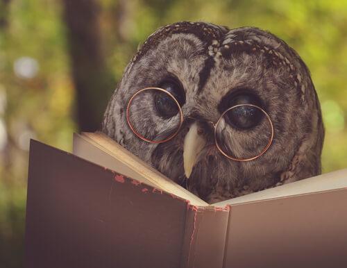 Animales en la literatura: grandes obras inspiradas por ellos