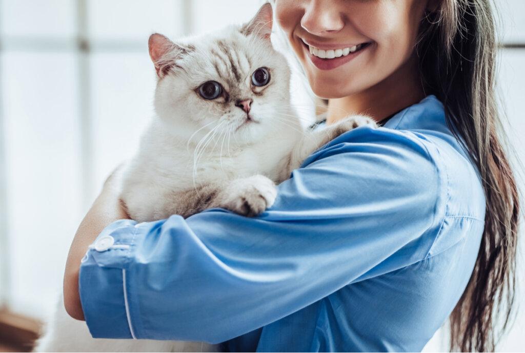 Acromegalia en gatos: síntomas y tratamientos