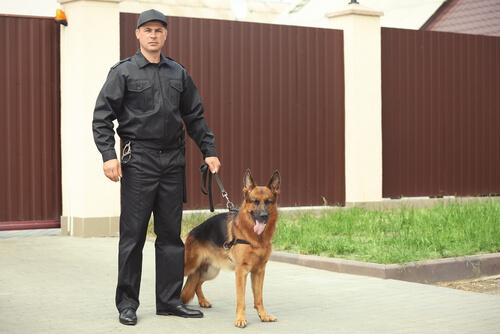 Legalidad sobre los perros de guarda y protección