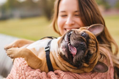 Mascotas y desarrollo en adolescentes