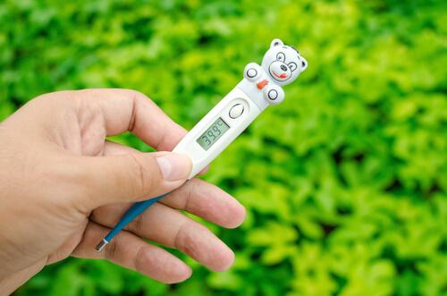 Un termómetro digital.