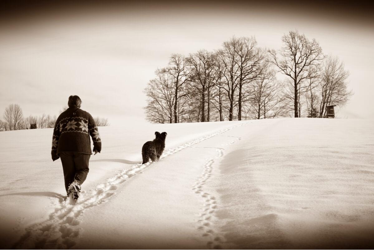 Una mujer y un perro caminan en la nieve.