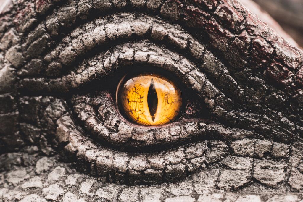 Dinosaurios depredadores: ¿sabemos sus estrategias?