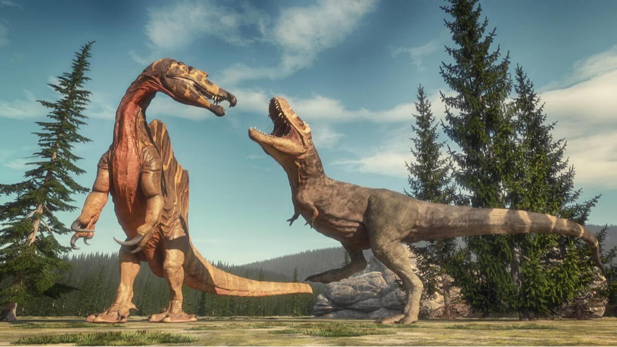 Una pelea entre dinosaurios.