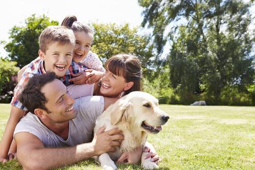 ¿Se pueden incluir las mascotas en las actividades familiares?