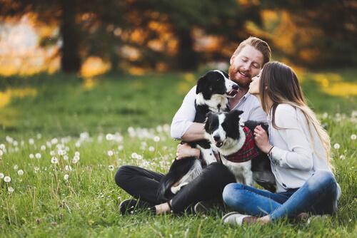 La felicidad que trae una mascota al hogar