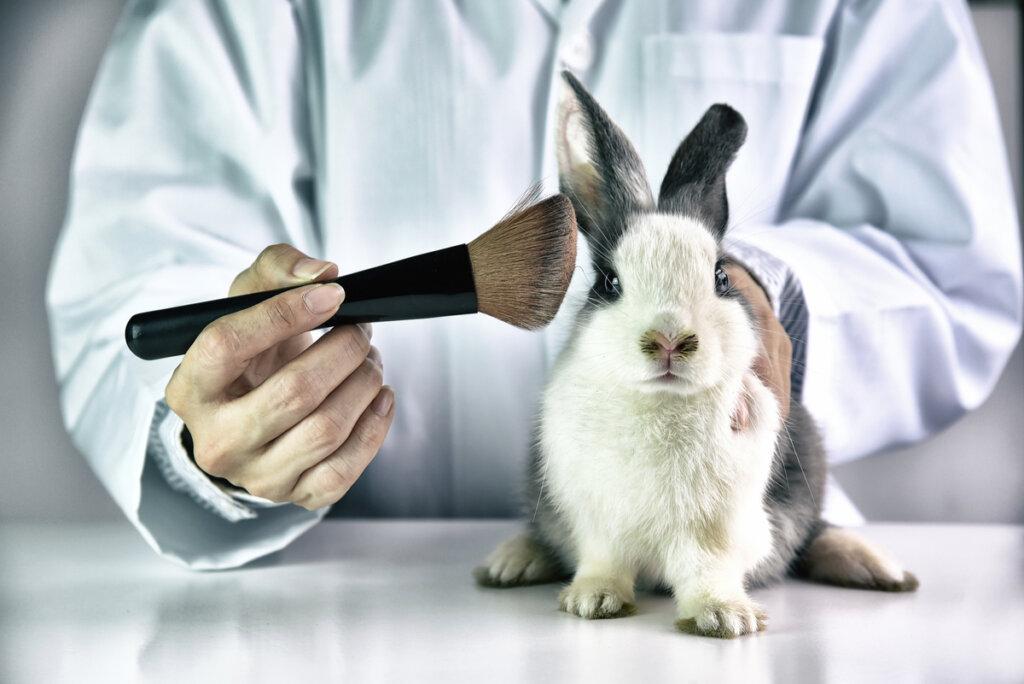 Perfumería y explotación animal