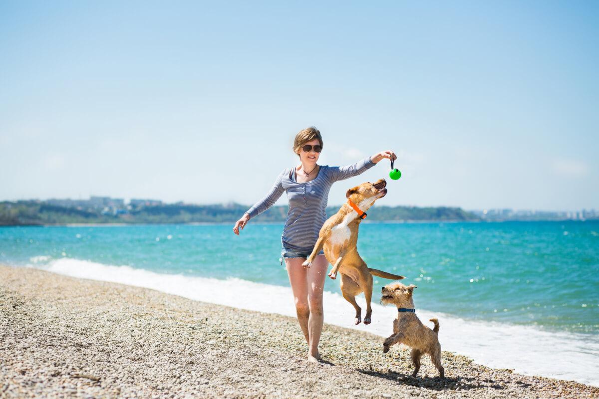 Una mujer jugando con sus perros en la playa.