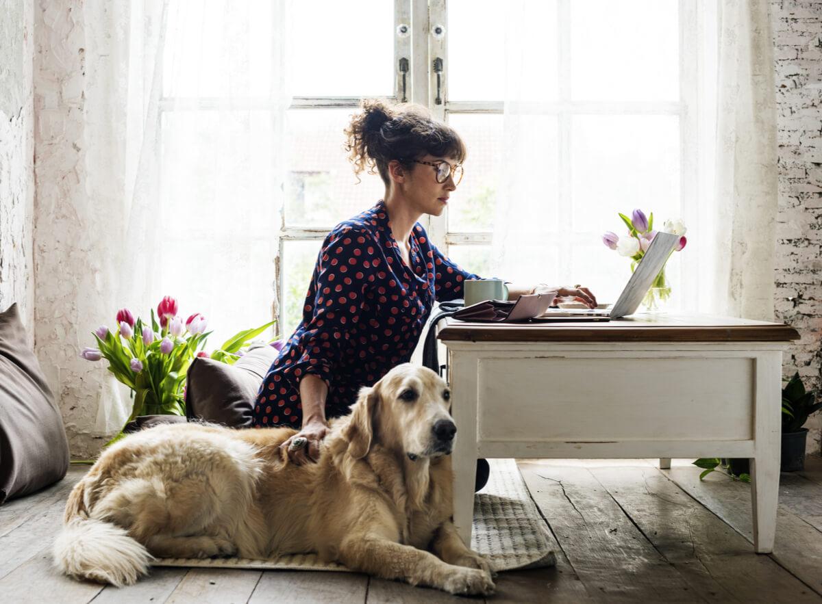 Una mujer acariciando a un perro.