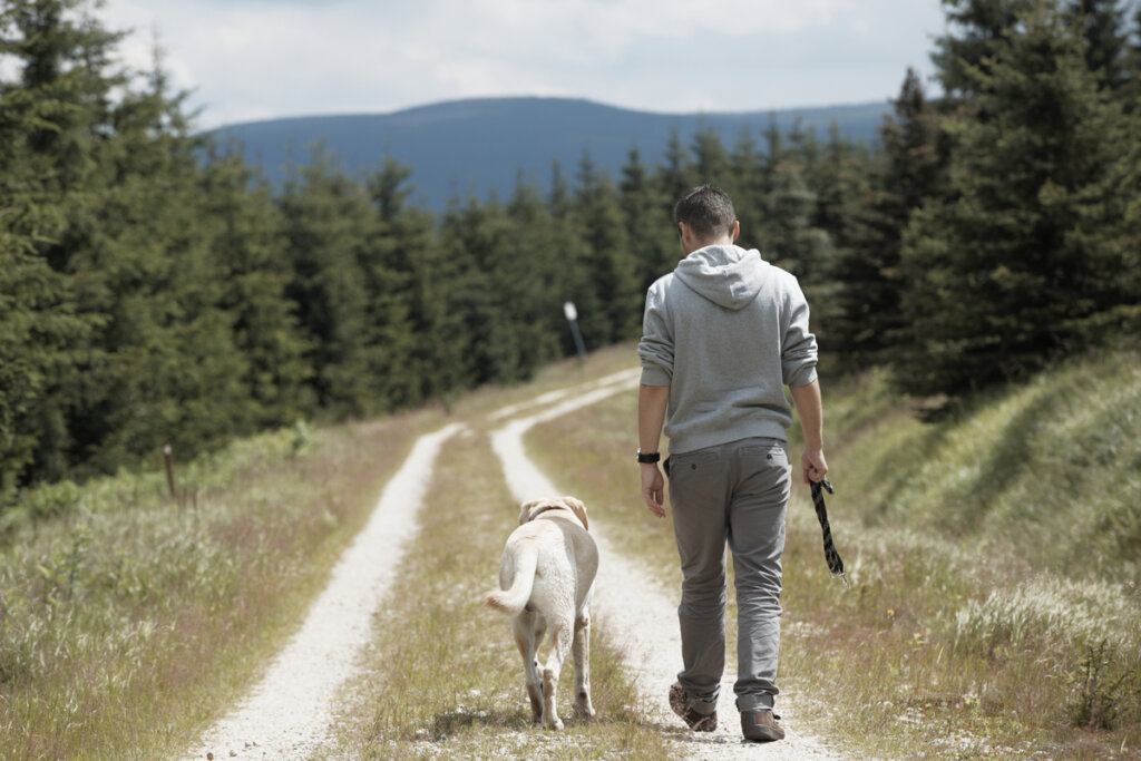 ¿Por qué los perros siguen a sus tutores?