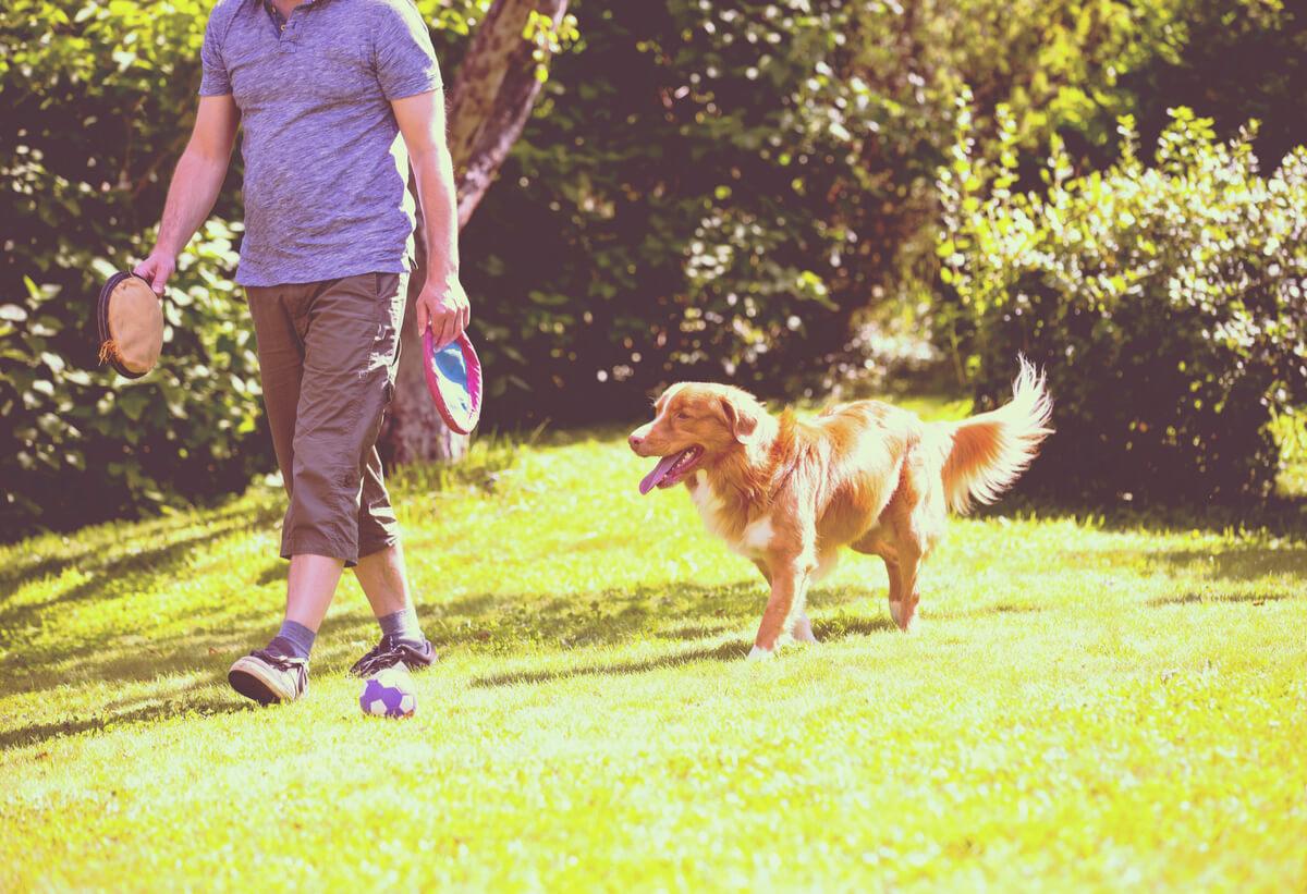 Un perro que sigue a una persona.