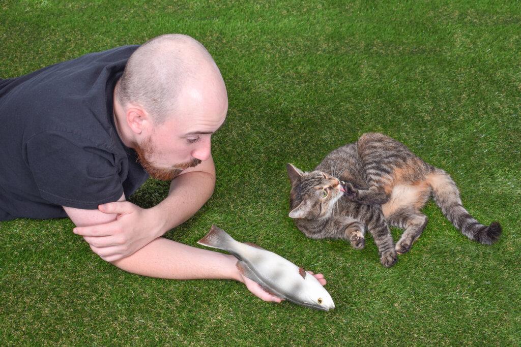 La interacción social de los gatos: cuatro datos para entenderla